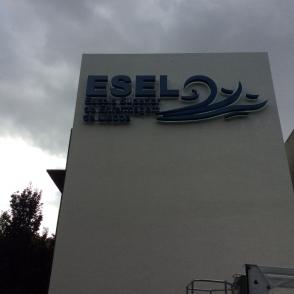 ESCOLA SUPERIOR DE ENFERMAGEM DE LISBOA – ESEL